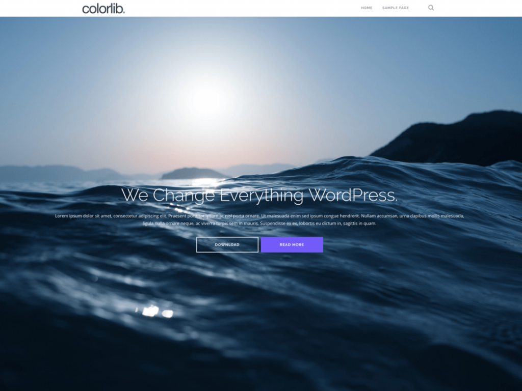 Welk gratis WordPress thema kiezen
