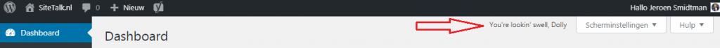Wat doet de Hello Dolly WordPress plugin